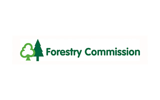 logo-forest