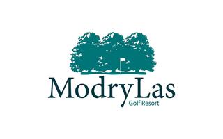 logo-modry